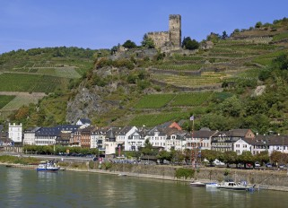 Rhein / Kaub / Burg Gutenfels