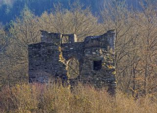 Rheingau / Lauksburg im Wispertal