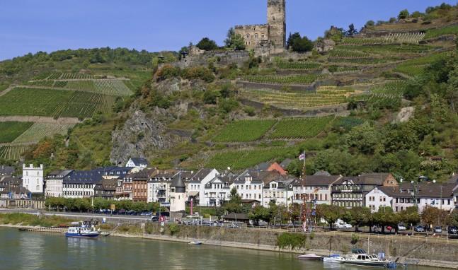 Die Netzwerker unterwegs auf Burg Gutenfels