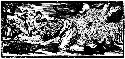 Werwolf,...  </div>   <a href=