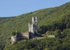 """Rosenfest """"Im Namen der Rose"""" auf Burg Sooneck"""