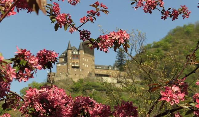 Burgen & Schlösser am Romantischen Rhein – Heute: Burg Katz