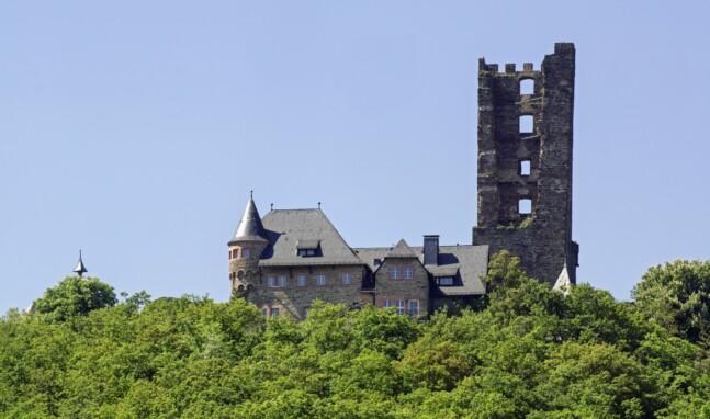 Sauerburg erwacht aus Dornröschenschlaf